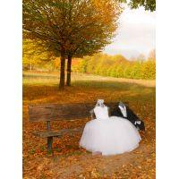 Hochzeitsredner, Freie Trauungen