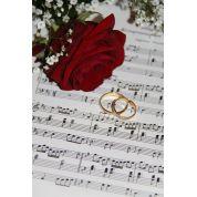 Bild von: Hochzeitssängerin