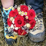 Bild von: Hochzeitsreportage Bronze (MO-FR)