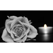 Bild von: freie Trauerrede - Beerdigung